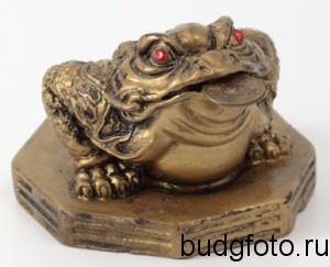 Трехпалая жаба символ богатства