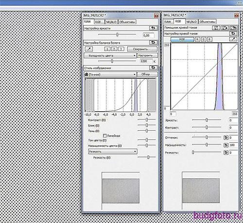 Пример определения цветовой температуры программой DPP фирмы CANON.