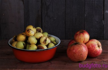 Натюрморт из яблок