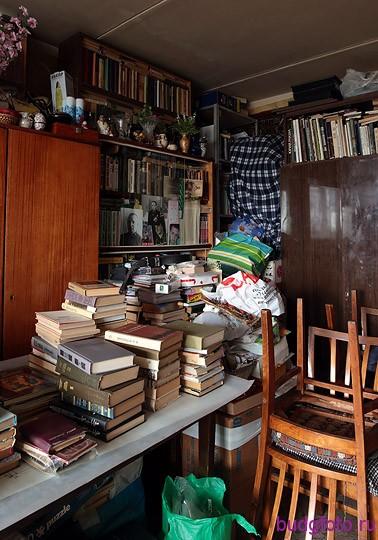 баррикада из книг
