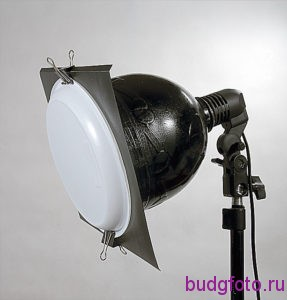 Одноразовая тарелка светофильтр.